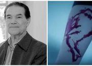 Divaldo fala sobre o Jogo da Baleia Azul e a Epidemia de Suicídios