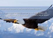 A Águia e o Cristão (Emocionante)