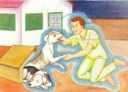 OS ANIMAIS E O MUNDO ESPIRITUAL - A ALMA DOS ANIMAIS NA VISÃO ESPÍRITA