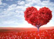 Amar a Deus - Reflexão Espírita