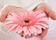 Quem oferece flores está sempre perfumado... (Reflexão Espírita)