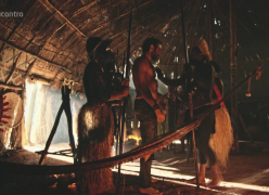 Índios que participaram de