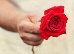 O Amor (versão de Perhaps Love por Vansan)