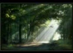A Paz - Música Espírita