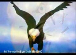 A História da Águia