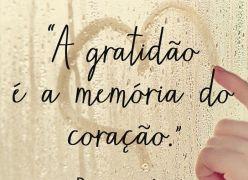 O sentimento de GRATIDÃO é tão PODEROSO que possibilita RÁPIDAS e fantásticas MUDANÇAS em nossa VIDA!