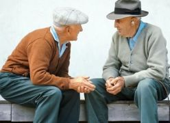 Velhos Amigos