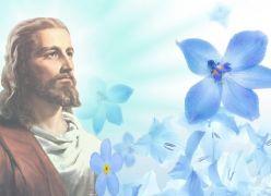Jesus, Modelo e Guia