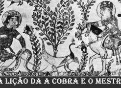 A lição da Cobra e o Mestre (Importante Reflexão)