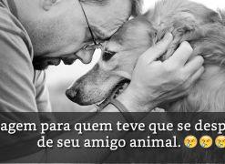 Humano, vejo que estás chorando porque chegou meu momento de partir... (Mensagem para quem teve que se despedir de seu amigo animal.)