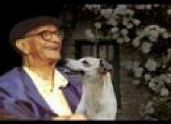Alegria - Chico Xavier