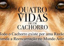 Entenda como funciona a reencarnação dos animais (Quatro Vidas de Um Cachorro)