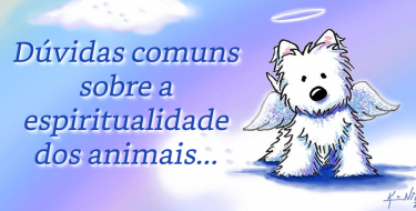 Dúvidas comuns sobre a espiritualidade dos animais...