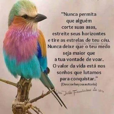 Nunca permita que alguém corte suas asas, estreite seus horizontes e tire as estrelas do…