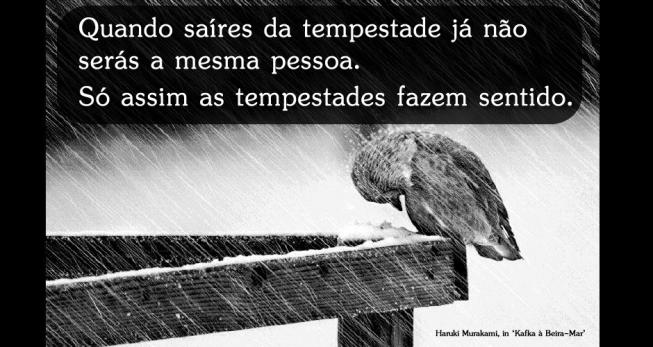 Quando Saíres Da Tempestade Já Não Serás A Mesma Pessoa